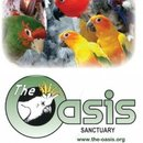 Oasis Sanctuary Foundation Ltd