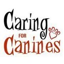 Caring For Canines