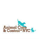 Animal Care And Control Of New York City Inc