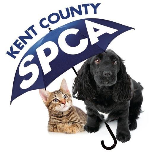 Kcspca new logo