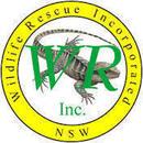 Wildlife Rescue Inc.