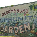 Bloomsburg Community Garden