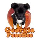 Georgia Peaches Puppy Rescue