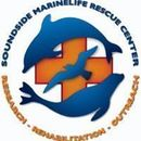 Soundside Marinelife Rescue Center