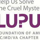 Lupus Foundation of America DC/MD/VA Chapter
