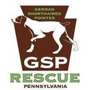 German Shorthaired Pointer Rescue Pennsylvania, Inc.