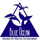 Blue Ocean Society For Marine Conservation Inc