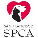 San Francisco Society For The Prevention Of Cruelty To Animals