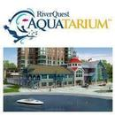RiverQuest Aquatarium