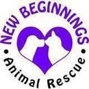 New Beginnings Animal Rescue- NJ