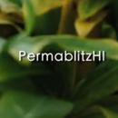 Permablitz Hawaii