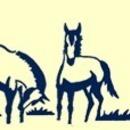 Horses' Haven