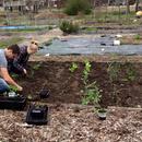 Oxford Community Garden Association