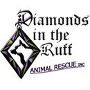 Diamonds in the Ruff Animal Rescue