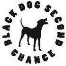 Black Dog Second Chance