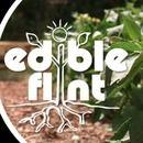 Edible Flint