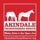 Akindale Thoroughbred Rescue