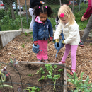 Cornell Cooperative Extension, Schenectady County