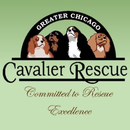 Greater Chicago Cavalier Rescue