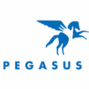Pegasus Therapeutic Riding, Inc.