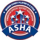 American Special Hockey Association