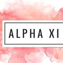 Alpha Xi Delta Service Hours 2017