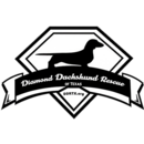 Diamond Dachshund Rescue of Texas