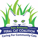 San Antonio Feral Cat Coalition