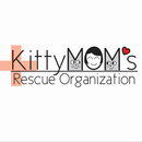 KittyMOM's Rescue Organization