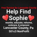 Help Find Sophie