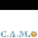 Camo Rescue