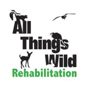 All%2bthings%2bwild%2brehabilitation