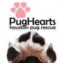 PugHearts Houston Pug Rescue