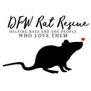 DFW Rat Rescue