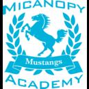 Micanopy Academy