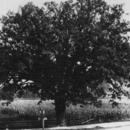 Gaylordsville Historical Society