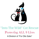 Into the Wild Cat Rescue, A Division of For Otis Sake