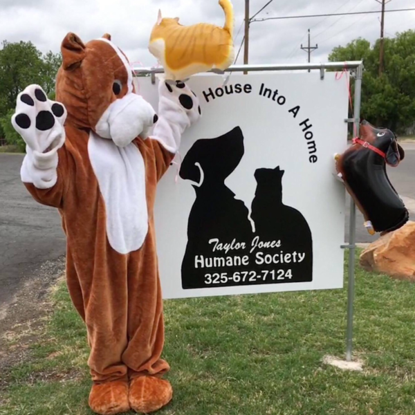 Give to Taylor Jones Humane Society | Abilene Gives