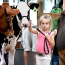 York County Agricultural Society