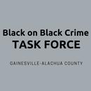 Black on Black Crime Task Force