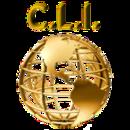 Chosen Life International, LLC