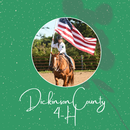 Dickinson County 4-H