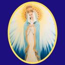 Mary of Nazareth Catholic