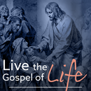 Respect Life Commission, Diocese of Reno