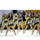 Golden Triangle Performance Ensemble