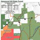 Friends of Hammond Hill