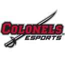 Colonel E-Sports