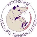 MoonShine Wildlife Rehabilitation