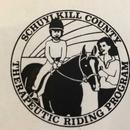 Avenues Schuylkill County Therapeutic Riding Program