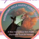 Harmony Hills Happy Horse Haven